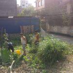 utilizing-underground-water-for irrigation